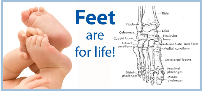 Wilson Foot Health Clinic Burlington for specialized and general foot treatment